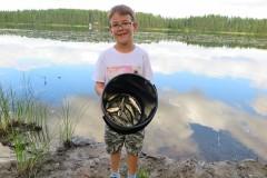 Der Pielavesi-See ist fischreich.